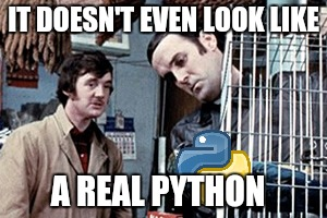 IT DOESN'T EVEN LOOK LIKE A REAL PYTHON | made w/ Imgflip meme maker