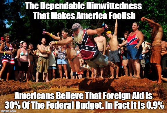 """The Dependable Dimwittedness That Makes America Foolish"" 