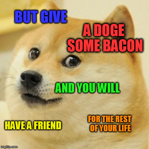 Doge Meme | BUT GIVE A DOGE SOME BACON AND YOU WILL HAVE A FRIEND FOR THE REST OF YOUR LIFE | image tagged in memes,doge | made w/ Imgflip meme maker