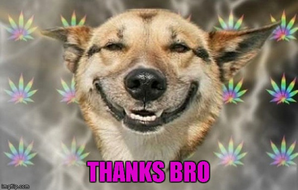 THANKS BRO | made w/ Imgflip meme maker