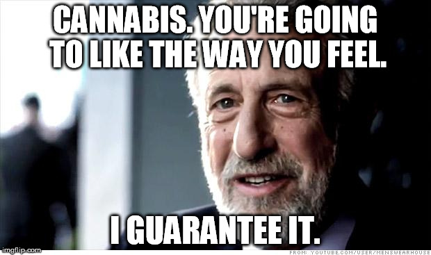 I Guarantee It Meme | CANNABIS. YOU'RE GOING TO LIKE THE WAY YOU FEEL. I GUARANTEE IT. | image tagged in memes,i guarantee it | made w/ Imgflip meme maker