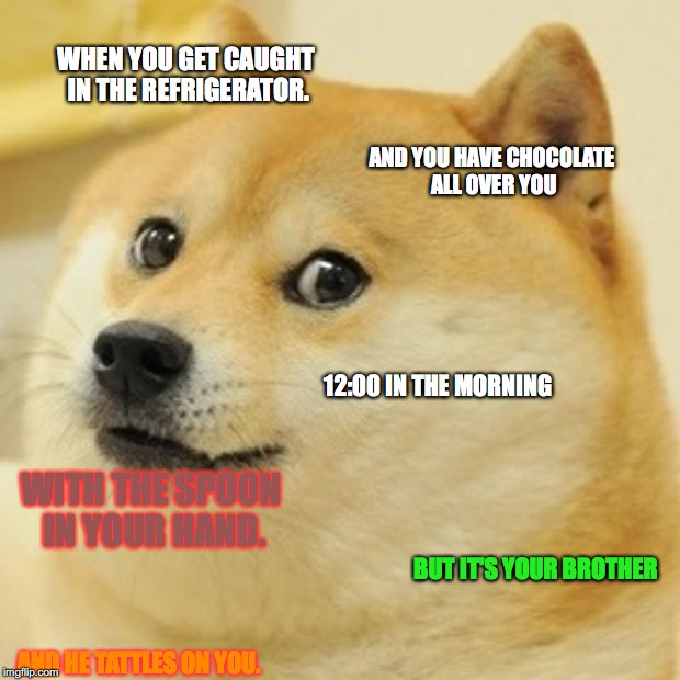 Doge Meme | WHEN YOU GET CAUGHT IN THE REFRIGERATOR. AND YOU HAVE CHOCOLATE ALL OVER YOU 12:00 IN THE MORNING WITH THE SPOON IN YOUR HAND. BUT IT'S YOUR | image tagged in memes,doge | made w/ Imgflip meme maker