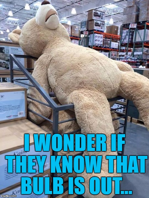 It must be driving him mad | I WONDER IF THEY KNOW THAT BULB IS OUT... | image tagged in giant teddy bear,memes,lightbulbs | made w/ Imgflip meme maker