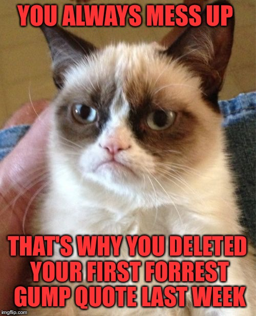 Grumpy Cat Meme | YOU ALWAYS MESS UP THAT'S WHY YOU DELETED YOUR FIRST FORREST GUMP QUOTE LAST WEEK | image tagged in memes,grumpy cat | made w/ Imgflip meme maker