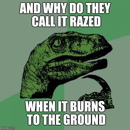 Philosoraptor Meme | AND WHY DO THEY CALL IT RAZED WHEN IT BURNS TO THE GROUND | image tagged in memes,philosoraptor | made w/ Imgflip meme maker