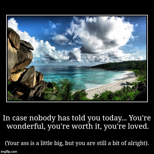 In case nobody has told you today...You're wonderful, you're worth it, you're loved. | (Your ass is a little big, but you are still a bit o | image tagged in funny,demotivationals | made w/ Imgflip demotivational maker