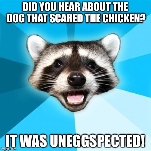 Lame Pun Coon Meme | DID YOU HEAR ABOUT THE DOG THAT SCARED THE CHICKEN? IT WAS UNEGGSPECTED! | image tagged in memes,lame pun coon | made w/ Imgflip meme maker