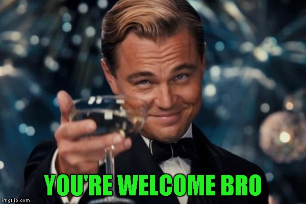 Leonardo Dicaprio Cheers Meme | YOU'RE WELCOME BRO | image tagged in memes,leonardo dicaprio cheers | made w/ Imgflip meme maker