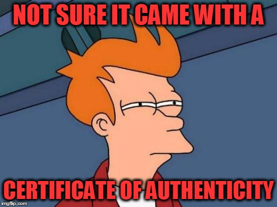 Futurama Fry Meme | NOT SURE IT CAME WITH A CERTIFICATE OF AUTHENTICITY | image tagged in memes,futurama fry | made w/ Imgflip meme maker