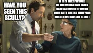 The truth is out there.  | IF IT IS THAT PICTURE OF YOU WITH A HALF EATEN HAM SANDWICH BETWEEN YOUR BUTT CHEEKS THEN YEAH MOLDER WE HAVE ALL SEEN IT HAVE YOU SEEN THIS | image tagged in memes,x files,fox mulder the x files,scully,bacon | made w/ Imgflip meme maker