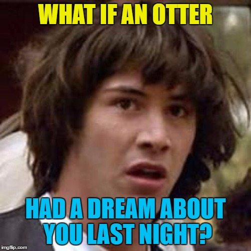 Conspiracy Keanu Meme | WHAT IF AN OTTER HAD A DREAM ABOUT YOU LAST NIGHT? | image tagged in memes,conspiracy keanu | made w/ Imgflip meme maker