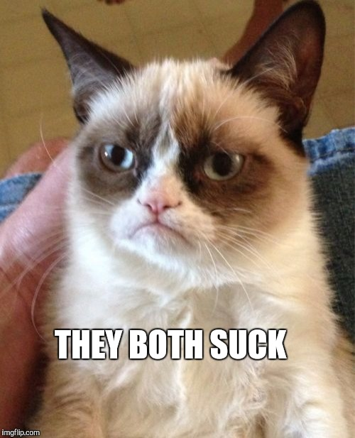 Grumpy Cat Meme | THEY BOTH SUCK | image tagged in memes,grumpy cat | made w/ Imgflip meme maker