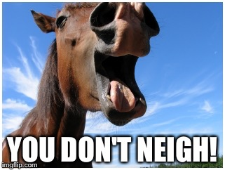 YOU DON'T NEIGH! | made w/ Imgflip meme maker