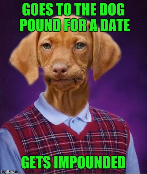 GOES TO THE DOG POUND FOR A DATE GETS IMPOUNDED | made w/ Imgflip meme maker