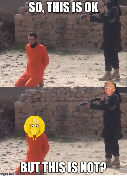 SO, THIS IS OK; BUT THIS IS NOT? | image tagged in trump,npr,leftist hypocrisy,drain the swamp,big bird | made w/ Imgflip meme maker