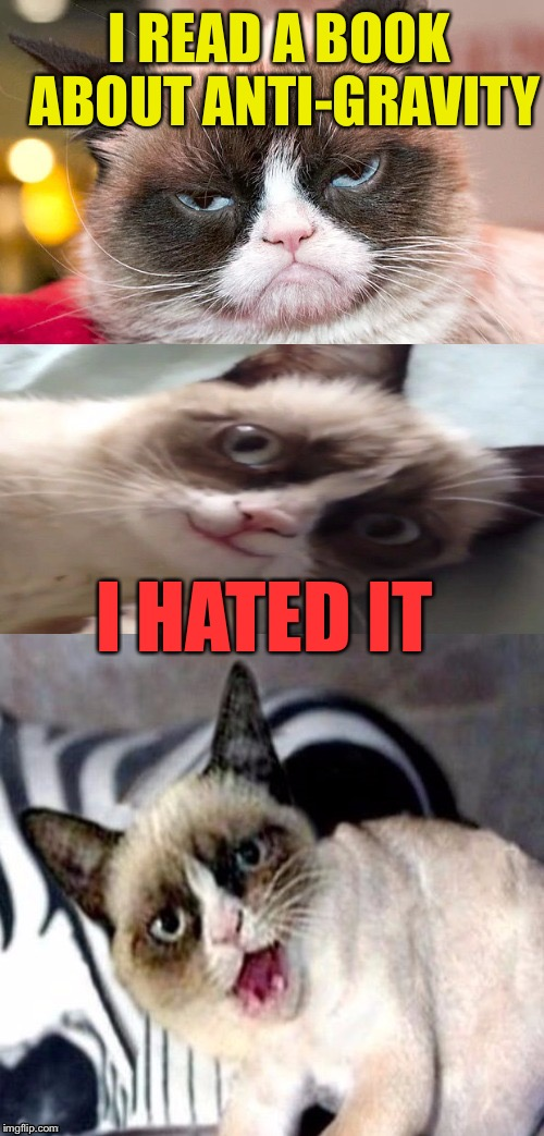 Bad Pun Grumpy Cat | I READ A BOOK ABOUT ANTI-GRAVITY I HATED IT | image tagged in bad pun grumpy cat,memes,gravity | made w/ Imgflip meme maker