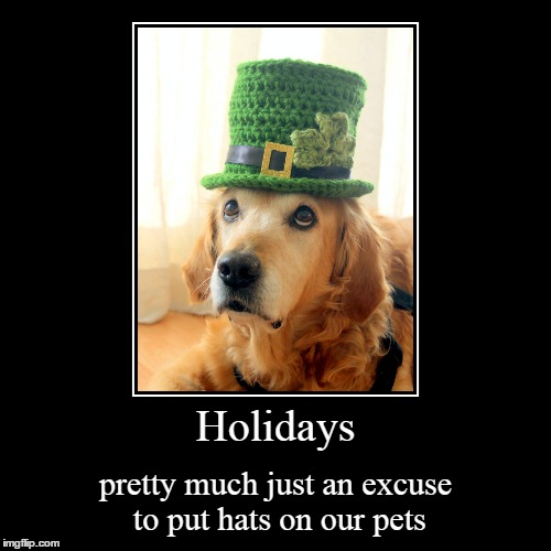Happy st. Patrick's day! | Holidays | pretty much just an excuse to put hats on our pets | image tagged in funny,demotivationals,memes,dog,st patricks day,hats | made w/ Imgflip demotivational maker