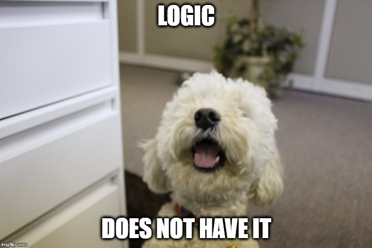 logic, doesn't have it |  LOGIC; DOES NOT HAVE IT | image tagged in honeythepoop,logic is irrelevant,no logic,doggo,dogs,puppy | made w/ Imgflip meme maker