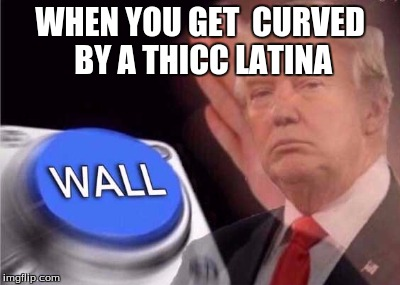 Wall |  WHEN YOU GET  CURVED BY A THICC LATINA | image tagged in trump wall button,wall,trump,meme,funny | made w/ Imgflip meme maker