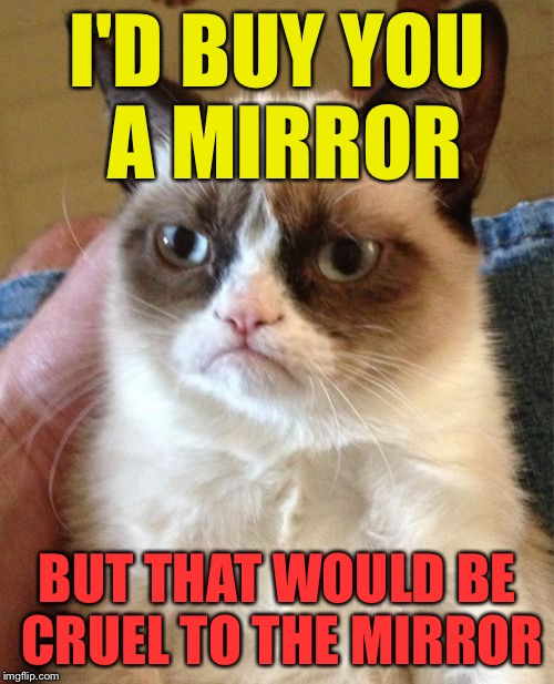 Grumpy Cat Meme | I'D BUY YOU A MIRROR BUT THAT WOULD BE CRUEL TO THE MIRROR | image tagged in memes,grumpy cat | made w/ Imgflip meme maker