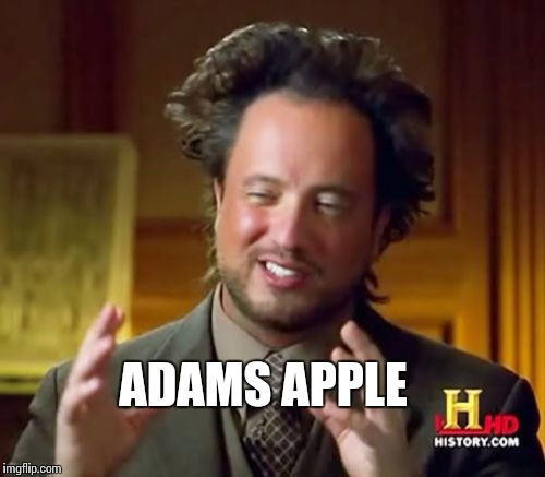 Ancient Aliens Meme | ADAMS APPLE | image tagged in memes,ancient aliens | made w/ Imgflip meme maker