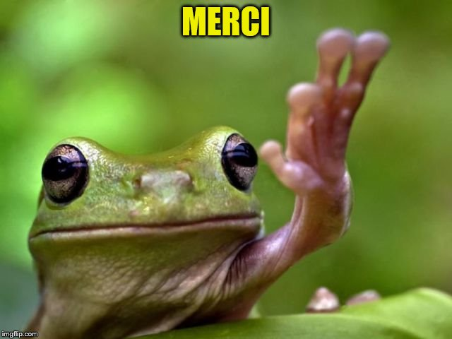 MERCI | made w/ Imgflip meme maker