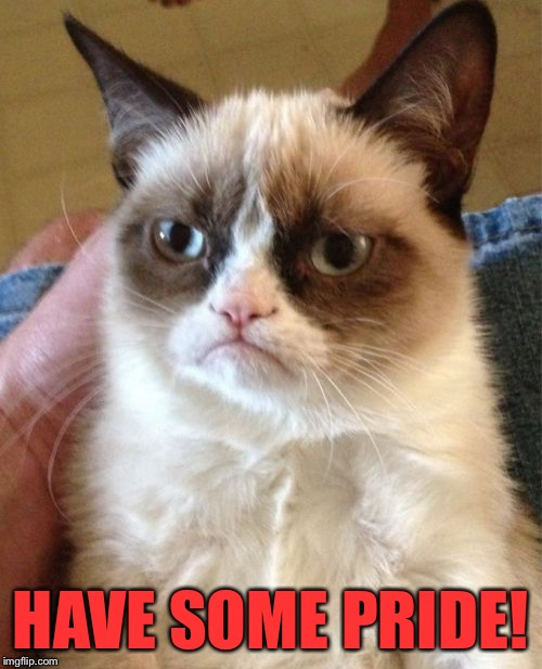 Grumpy Cat Meme | HAVE SOME PRIDE! | image tagged in memes,grumpy cat | made w/ Imgflip meme maker