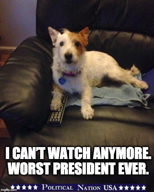 I CAN'T WATCH ANYMORE. WORST PRESIDENT EVER. | image tagged in nevertrump,never trump,nevertrump meme,dump trump,dumptrump | made w/ Imgflip meme maker