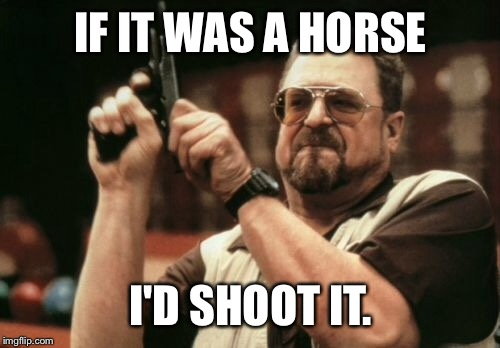 Am I The Only One Around Here Meme | IF IT WAS A HORSE I'D SHOOT IT. | image tagged in memes,am i the only one around here | made w/ Imgflip meme maker