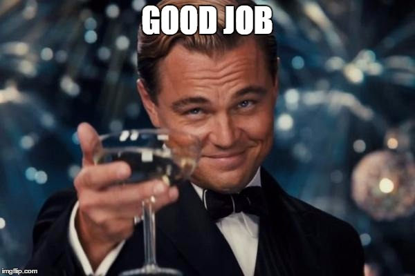 Leonardo Dicaprio Cheers Meme | GOOD JOB | image tagged in memes,leonardo dicaprio cheers | made w/ Imgflip meme maker