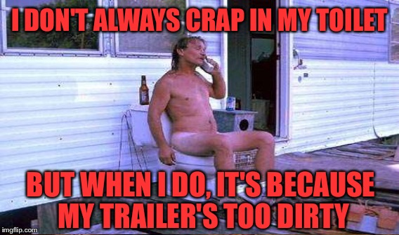 I DON'T ALWAYS CRAP IN MY TOILET BUT WHEN I DO, IT'S BECAUSE MY TRAILER'S TOO DIRTY | made w/ Imgflip meme maker