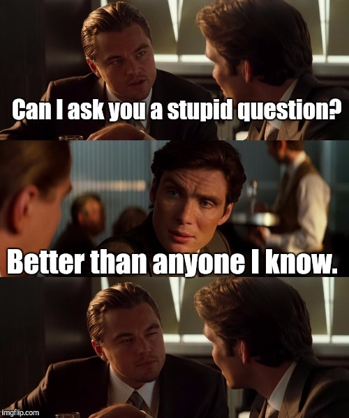 15svjp.jpg  | Can I ask you a stupid question? Better than anyone I know. | image tagged in 15svjpjpg | made w/ Imgflip meme maker