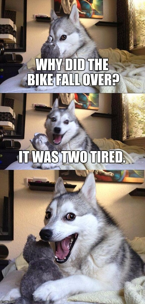 Bad Pun Dog Meme | WHY DID THE BIKE FALL OVER? IT WAS TWO TIRED. | image tagged in memes,bad pun dog | made w/ Imgflip meme maker