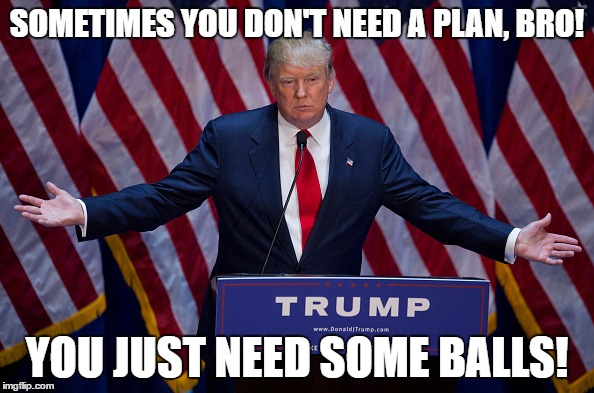 Donald Trump | SOMETIMES YOU DON'T NEED A PLAN, BRO! YOU JUST NEED SOME BALLS! | image tagged in donald trump | made w/ Imgflip meme maker