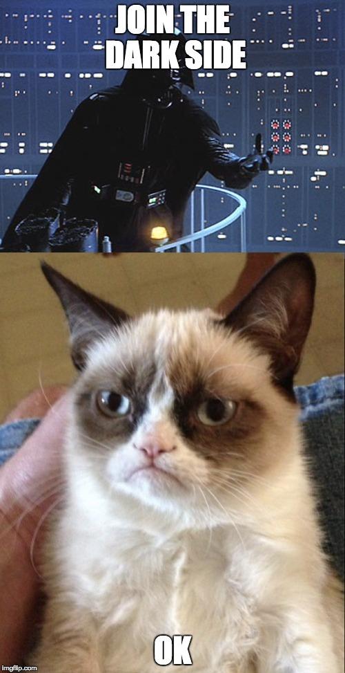 Cat Memes Darth Vader
