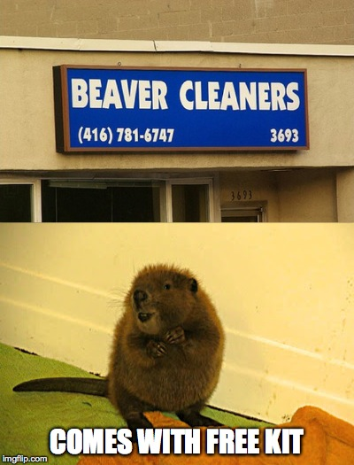 Beaver Cleaners | COMES WITH FREE KIT | image tagged in free kit | made w/ Imgflip meme maker