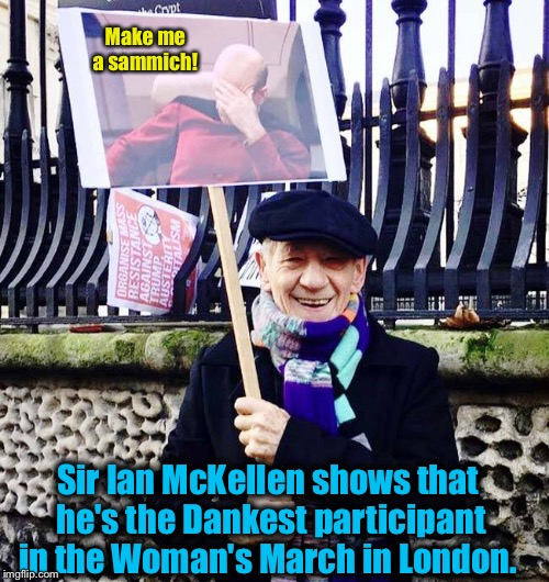 Sir Ian McKellen, aka Gandalf, aka Magneto, and also best friend of Captain Picard, aka Patrick Stewart shows why he's so cool! | Make me a sammich! Sir Ian McKellen shows that he's the Dankest participant in the Woman's March in London. | image tagged in picard face palm,memes,womens march,evilmandoevil,funny,gandalf | made w/ Imgflip meme maker