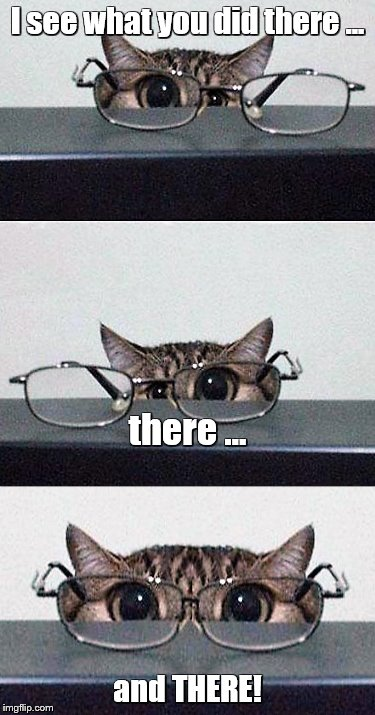 I see what you did there ... and THERE! there ... | image tagged in memes,cats,cute cat | made w/ Imgflip meme maker