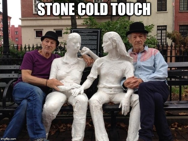 STONE COLD TOUCH | made w/ Imgflip meme maker