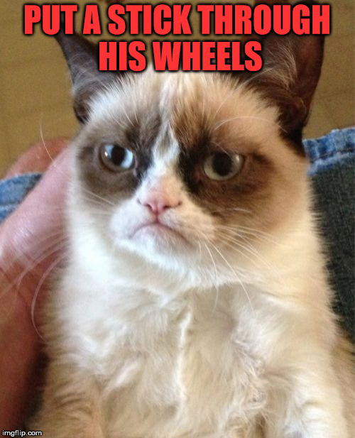 Grumpy Cat Meme | PUT A STICK THROUGH HIS WHEELS | image tagged in memes,grumpy cat | made w/ Imgflip meme maker