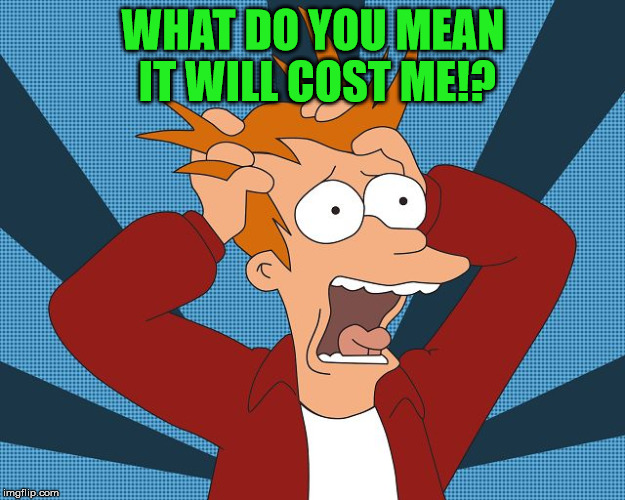 Fry Losing His Mind | WHAT DO YOU MEAN IT WILL COST ME!? | image tagged in fry losing his mind | made w/ Imgflip meme maker