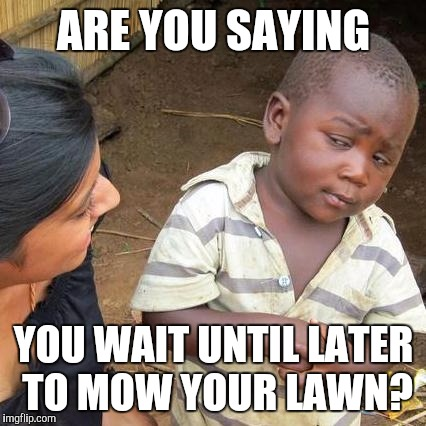 Third World Skeptical Kid Meme | ARE YOU SAYING YOU WAIT UNTIL LATER TO MOW YOUR LAWN? | image tagged in memes,third world skeptical kid | made w/ Imgflip meme maker