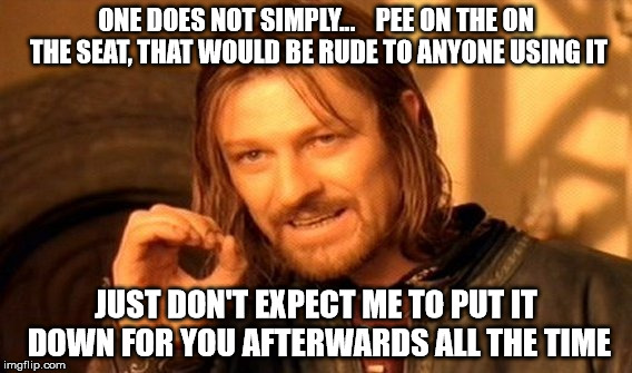 One Does Not Simply Meme | ONE DOES NOT SIMPLY...    PEE ON THE ON THE SEAT, THAT WOULD BE RUDE TO ANYONE USING IT JUST DON'T EXPECT ME TO PUT IT DOWN FOR YOU AFTERWAR | image tagged in memes,one does not simply | made w/ Imgflip meme maker