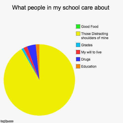 What people in my school care about | Education, Drugs, My will to live, Grades, Those Distracting shoulders of mine, Good Food | image tagged in funny,pie charts | made w/ Imgflip pie chart maker