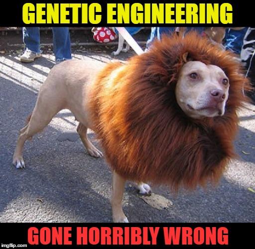 Mutation Images Imgflip