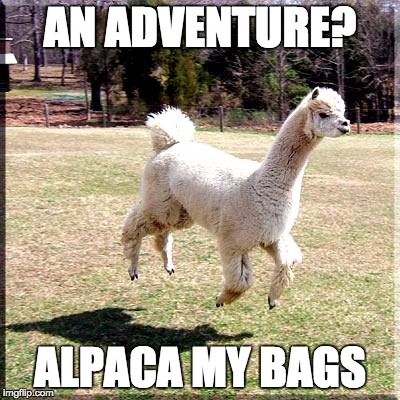 ALPACA MY BAGS | image tagged in alpaca flying | made w/