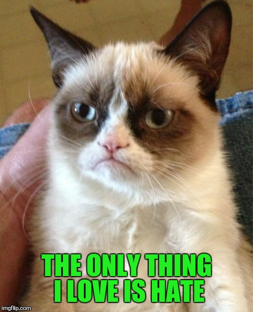 Grumpy Cat Meme | THE ONLY THING I LOVE IS HATE | image tagged in memes,grumpy cat | made w/ Imgflip meme maker