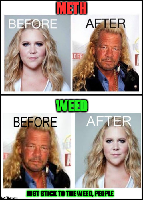 METH WEED JUST STICK TO THE WEED, PEOPLE | image tagged in weed,amy schumer,amy shumer,chapman,meth,drugs | made w/ Imgflip meme maker