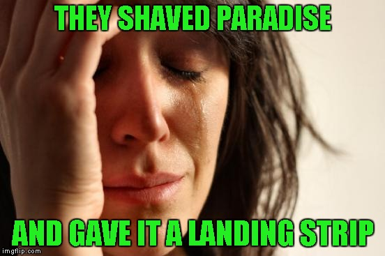 First World Problems Meme | THEY SHAVED PARADISE AND GAVE IT A LANDING STRIP | image tagged in memes,first world problems | made w/ Imgflip meme maker
