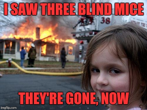 Disaster Girl Meme | I SAW THREE BLIND MICE THEY'RE GONE, NOW | image tagged in memes,disaster girl | made w/ Imgflip meme maker